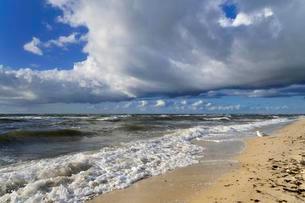 Low clouds over the western beach, Darss, Western Pomeraniaの写真素材 [FYI02339932]