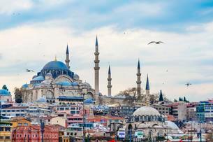 Suleymaniye Mosque, Golden Horn, Istanbul, Turkey, Asiaの写真素材 [FYI02339960]