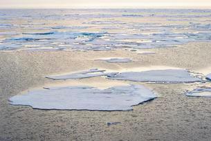 Arctic Ocean, 81° North and 26° East, Svalbardの写真素材 [FYI02340002]