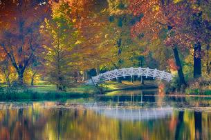 Autumn in Worlitzer Park, UNESCO World Heritage Gardenの写真素材 [FYI02340099]