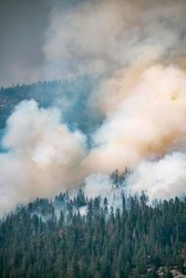 Smoke cloud of a forest fire, Yosemite National Parkの写真素材 [FYI02340173]