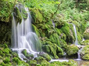 Waterfall at Mixnitzbach, Mixnitz, Styria, Austria, Europeの写真素材 [FYI02340178]