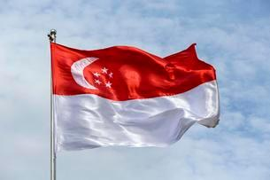 Singapore flag blowing in windの写真素材 [FYI02340195]