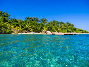 Sun-Sun Beach, Blue Lagoon, Jamaica, Central Americaの写真素材 [FYI02340249]
