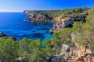 Rocky coast, Cala s'Almunia, Majorca, Balearic Islandsの写真素材 [FYI02340258]