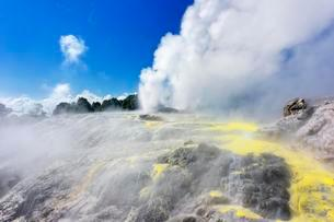 Pohutu Geyser and Prince of Wales Feathers Geyser, Te Puiaの写真素材 [FYI02340375]