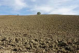 Harvested and plowed dirt fields, Scansano, Grosetoの写真素材 [FYI02340407]