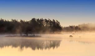 Lake Maen at dawn, Gashult, Smaland, Sweden, Europeの写真素材 [FYI02340442]