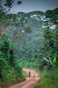 Woman walking on a dirt road, through the rainforestの写真素材 [FYI02340495]