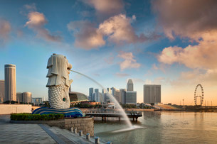 The Merlion at sunrise, symbol of the city of Singaporeの写真素材 [FYI02340497]