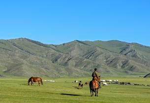 Nomads in the barren landscape in the Orkhon Valleyの写真素材 [FYI02340523]
