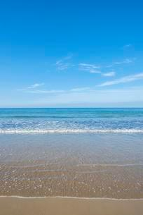 Sandy beach, White Rock Beach on northern Atlantic Oceanの写真素材 [FYI02340637]