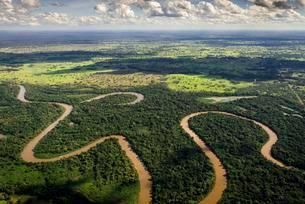 Rio Aquidauana flows through jungle, Pantanal, Mato Grossoの写真素材 [FYI02340658]