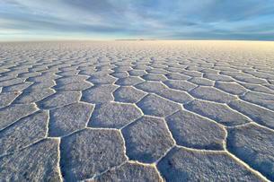 Honeycomb structure on Salar de Uyuni, salt flatの写真素材 [FYI02340660]