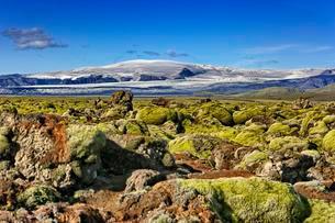 Moss-covered lava field Laufskalavaroa, at back volcanoの写真素材 [FYI02340665]