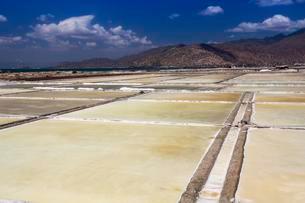 Salt fields for salt production, Ninh Thuan provinceの写真素材 [FYI02340819]