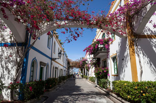 Typical alleyway in Puerto de Mogan, Gran Canaria, Canaryの写真素材 [FYI02340821]