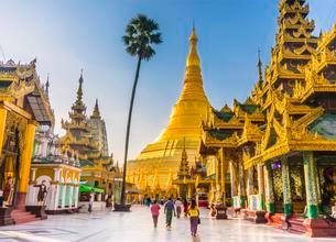 Golden Shwedagon Pagoda, main stupa, stupa, Shwedagon Payaの写真素材 [FYI02340823]