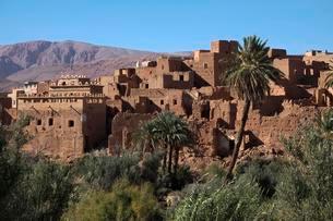 Tinghir, oasis, High Atlas, Souss-Massa-Draa, Moroccoの写真素材 [FYI02340866]