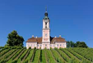 Birnau pilgrimage church with vineyardの写真素材 [FYI02340879]