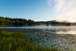Lake, fog, Dutch Lake, Clearwater, British Columbiaの写真素材 [FYI02340969]