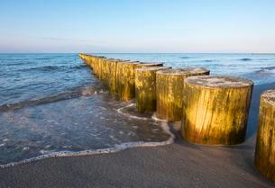 Groyne on Baltic Sea beach, Prerow, DarBの写真素材 [FYI02340978]