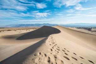 Mesquite Flat Sand Dunes, sand dune tracks, Amargosaの写真素材 [FYI02340998]