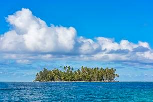Small deserted island with palm trees, Raiatea, Frenchの写真素材 [FYI02341038]