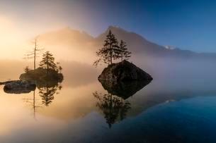 Hintersee lake with morning fog at sunrise, waterの写真素材 [FYI02341044]
