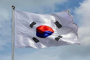 South Korea Flag blowing in the wind, Koreaの写真素材 [FYI02341087]