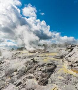 Steaming Pohutu Geyser and Prince of Wales Feathers Geyserの写真素材 [FYI02341157]