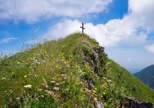 Summit cross and mountain flowers on Hochgernの写真素材 [FYI02341162]