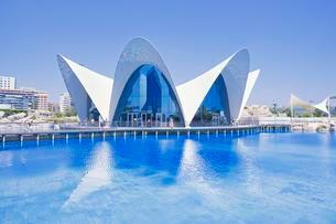 L'Oceanogr?fic, The Oceanographic Aquarium, City of Artsの写真素材 [FYI02341239]