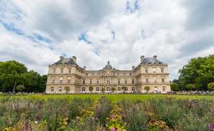 Palais du Luxembourg, Jardin du Luxembourg, Quartier Latinの写真素材 [FYI02341252]