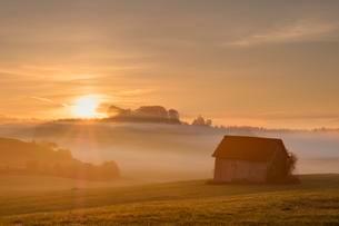 Sunrise, Heustadl on a meadow, foggy atmosphere, Bauersbachの写真素材 [FYI02341278]