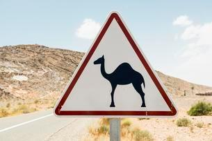 Warning, camels, traffic sign in Erfoud, Morocco, Africaのイラスト素材 [FYI02341318]