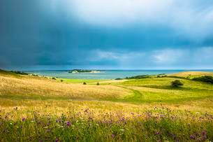 Grass landscape, view of Bodden, stormy weather, Monchgutの写真素材 [FYI02341366]