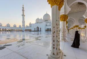 Sheikh Zayed Mosque, Sheikh Zayed Grand Mosque, Abu Dhabiの写真素材 [FYI02341403]