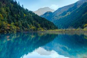 Arrow Bamboo Lake, Jiuzhaigou National Park, Sichuanの写真素材 [FYI02341414]