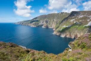 Slieve League, Europe's highest cliff, County Donegalの写真素材 [FYI02341417]