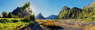 Panorama of Milford Sound, Mitre Peak, palm trees at lowの写真素材 [FYI02341419]