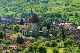 Fortified church, Biertan, Birthalm, Transylvaniaの写真素材 [FYI02341520]