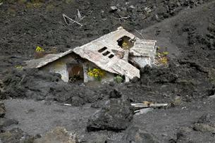 House covered with lava on the slopes of Mount Etnaの写真素材 [FYI02341601]