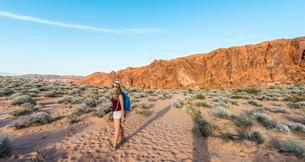 Woman hiking through the desert, Valley of Fire State Parkの写真素材 [FYI02341605]