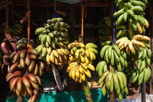 Fruit stall, bananas, Central Province, Sri Lanka, Asiaの写真素材 [FYI02341687]