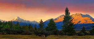 snowy peak of Mount Cook, Aoraki and bush landscape atの写真素材 [FYI02341692]