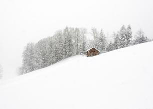 Mountain hut in front of winter forest, dense snowfallの写真素材 [FYI02341747]