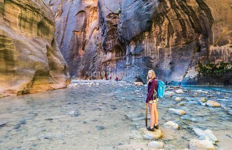 Hiker standing in river, Zion Narrows, narrow of the Virginの写真素材 [FYI02341770]