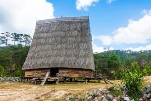 Traditonal Vietnamese Bahnar Rong, wooden house, Houseの写真素材 [FYI02341771]