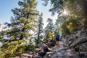Hiker, Woman hiking at the John Muir Trail, Yosemiteの写真素材 [FYI02341775]